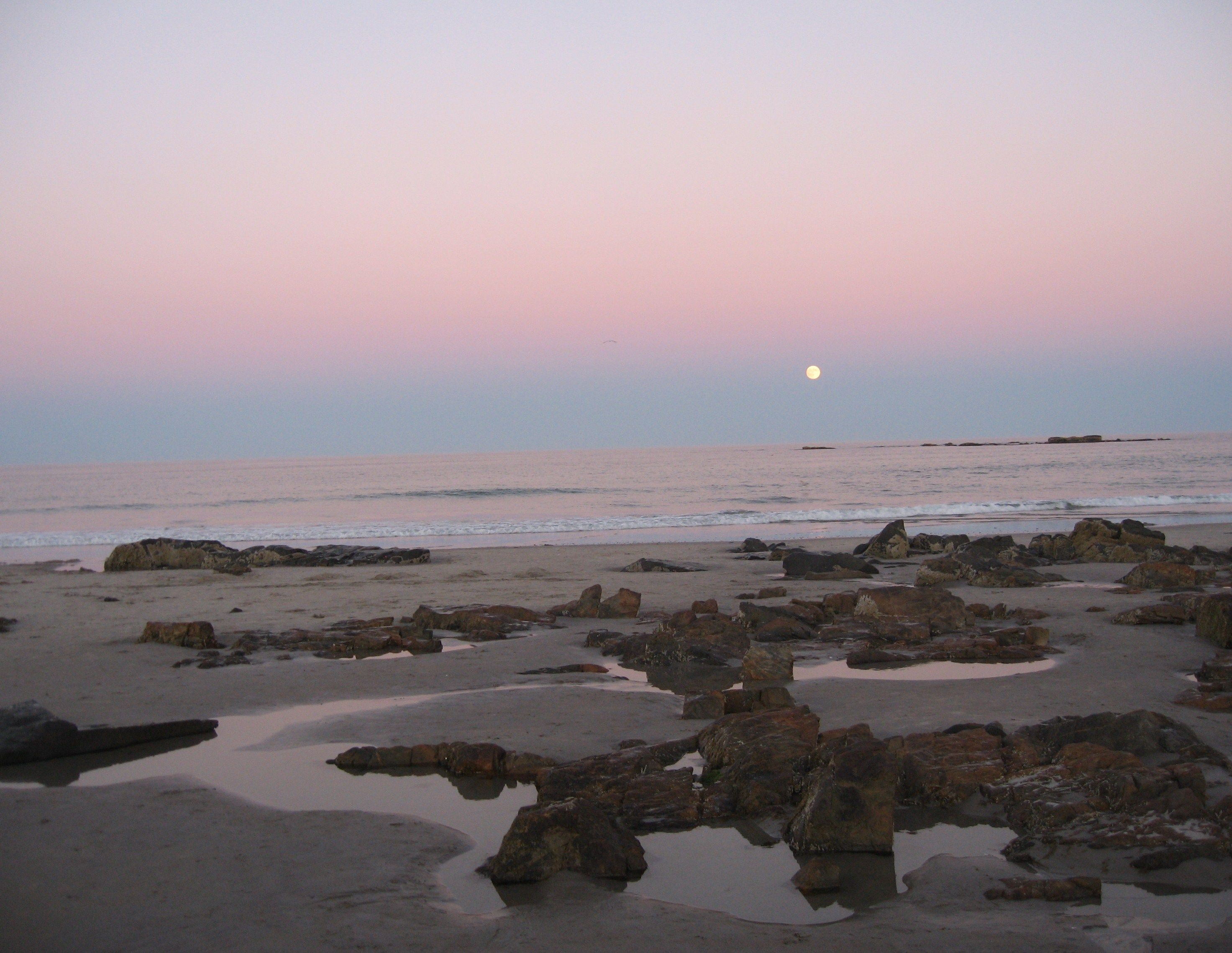 Moon Rise Over The Ocean