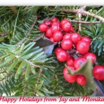 NH Holiday Home Selling tips…