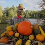 Chester New Hampshire Scarecrows 2011