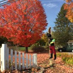 Hampstead NH Scarecrows 2015