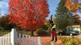 Hampstead NH Scarecrows